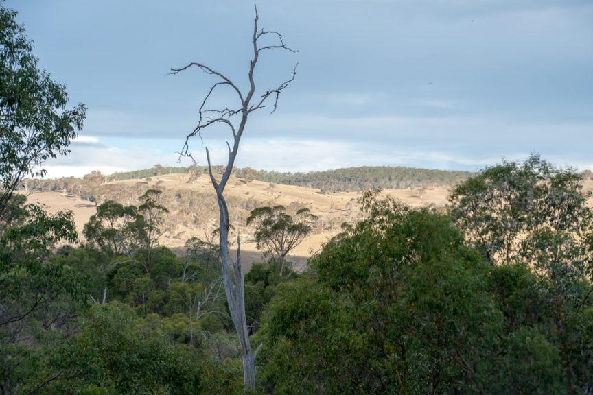 Victoria Falls (Cobungru) countryside
