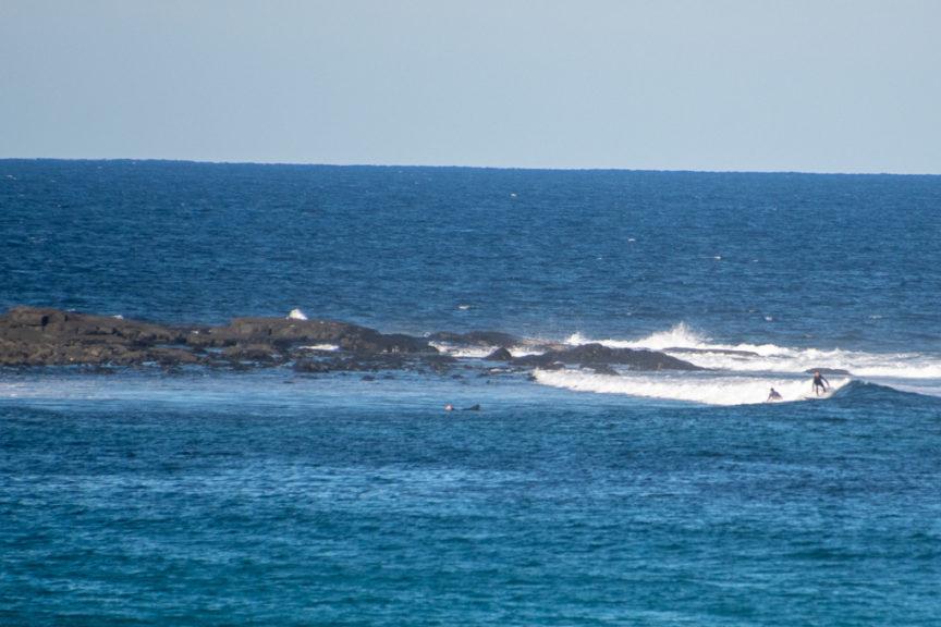 Green Island surfers