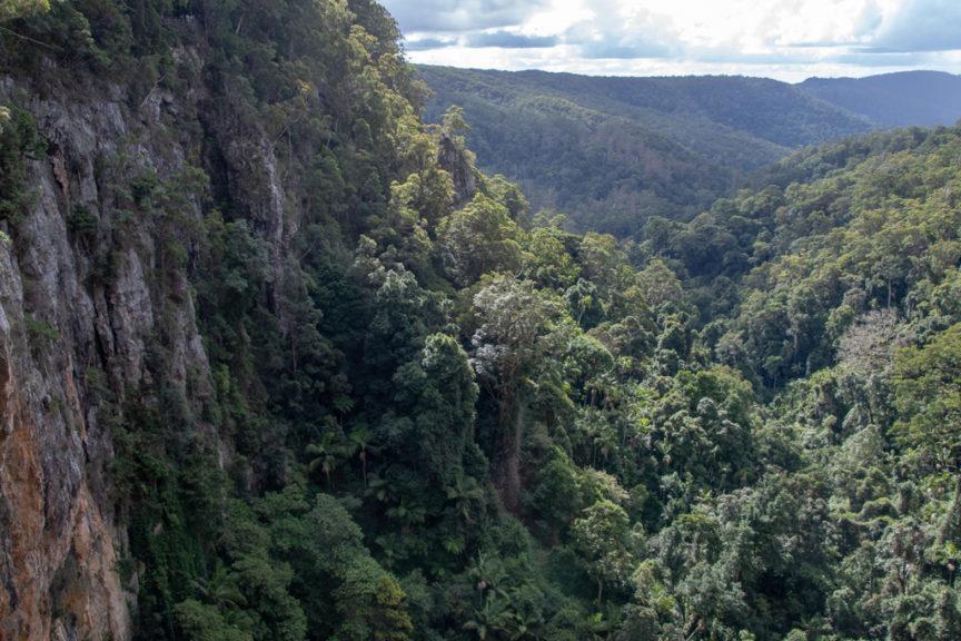 Purling Brook Falls views