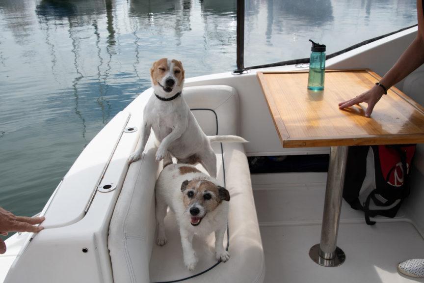 Ommie & Mr Bikk on Laird's boat