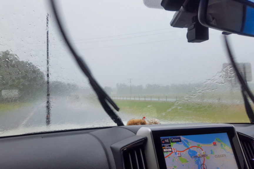 Just a bit of M1 rain!