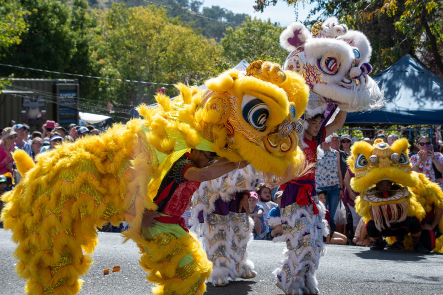 Nundle Chinese Dragons